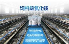 Ammonium Chloride is Used in Veterinary Drugs